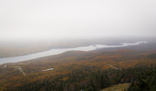 les couleurs de l'automne sous le brouillard