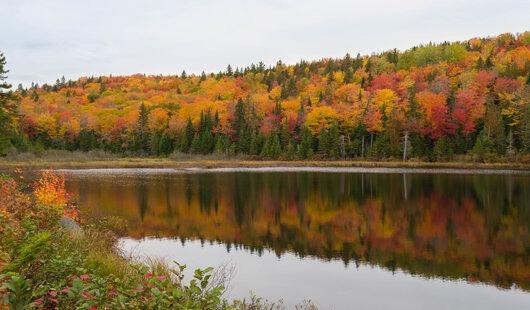 les couleurs de l'automne en reflet