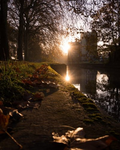 golden hour de l'automne